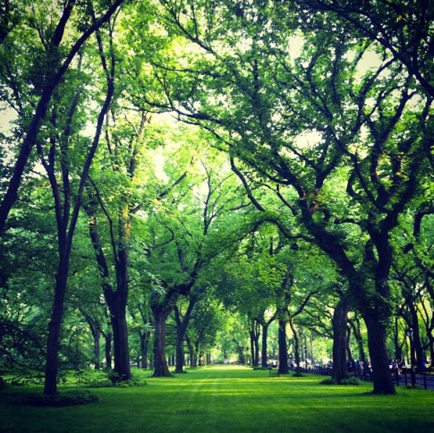 2013-05-central-park-nyc